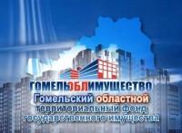 Гомельский областной территориальный фонд государственного имущества